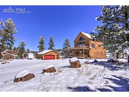 377 Apache Road Florissant, CO MLS# 9706434