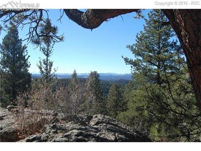 Charming View Road Divide, CO MLS# 9857482