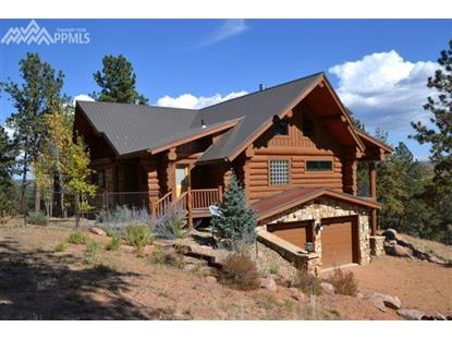 2216 County 46 Road Florissant, CO MLS# 9989846