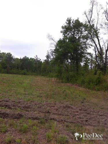 Lot 5B & 6A Cubie Rd., Effingham, SC 29541
