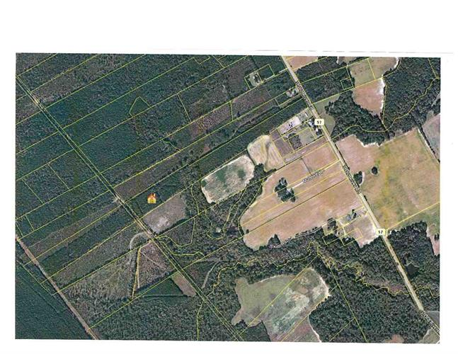TBD Old River Rd., Pamplico, SC 29583