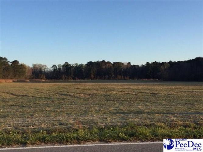 4600 Lot 1 Meadors Rd, Florence, SC 29501
