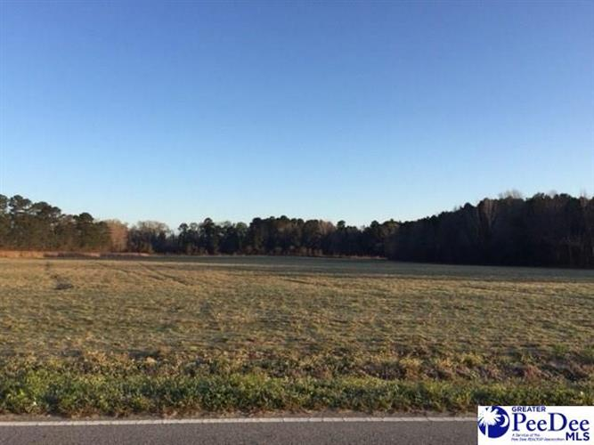 4600 Lot 2 Meadors Rd, Florence, SC 29501