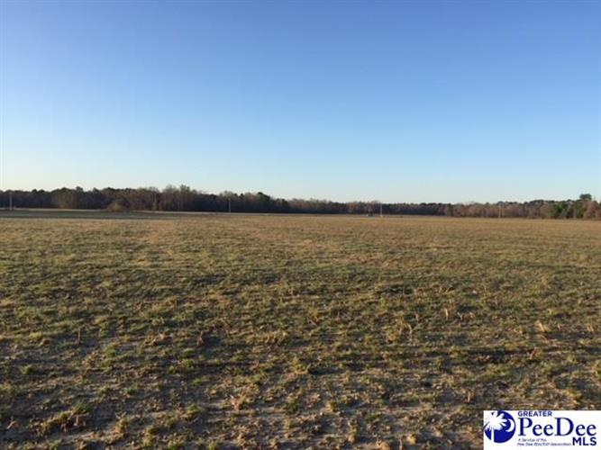 4600 lot 7 Meadors Rd, Florence, SC 29501