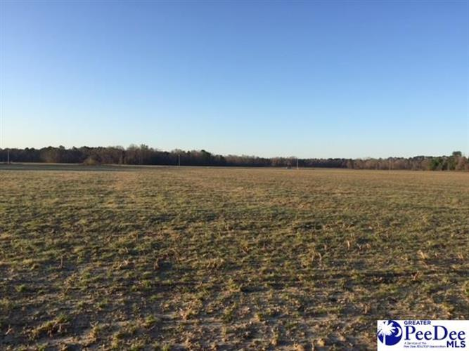 tbd lot 11 Hollyberry Ln, Florence, SC 29501 - Image 1