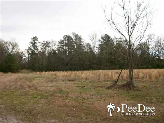9.4 acres Lloyd St., Mullins, SC 29574
