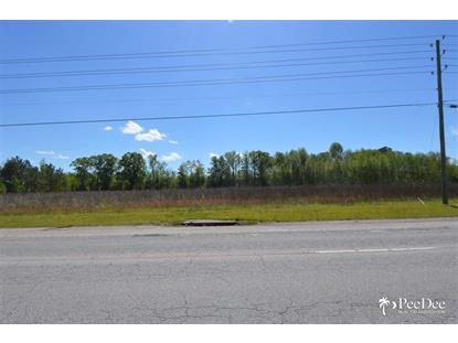 036-00-01-011 W Bobo Newsom Highway Hartsville, SC MLS# 127868