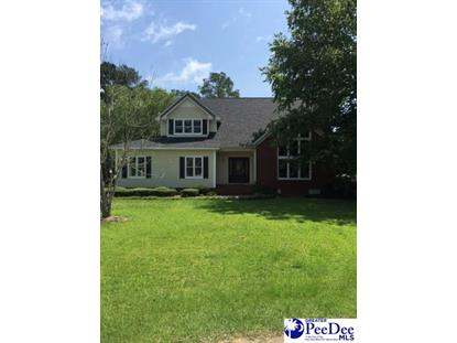 428 Meadow Brook Terrace Hartsville, SC MLS# 128757