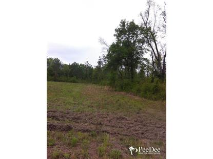 Lot 5B & 6A Cubie Rd., Effingham, SC
