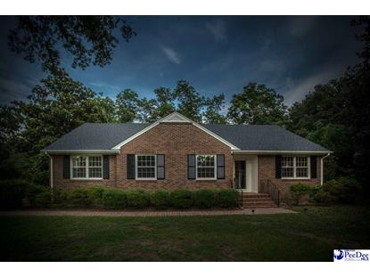 117 Holly Drive Hartsville, SC MLS# 131556