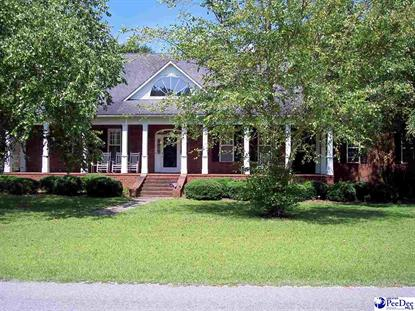 1033 DOCTOR HARDY CIRCLE Dillon, SC MLS# 133074