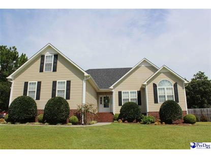 421 Mourning Dove Dr Hartsville, SC MLS# 133526