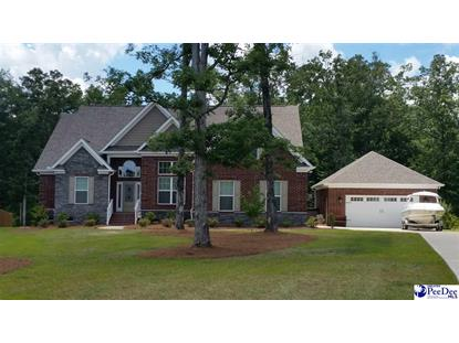 207 Renard Roux Ct Gilbert, SC MLS# 133661