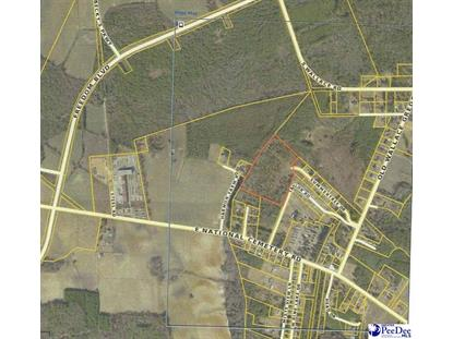 Winterberry Subdivision Florence, SC MLS# 135083