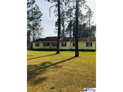 203 Red Camellia Drive, Darlington, SC