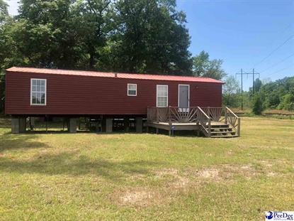 1305 Red Breast RD, Quinby, SC