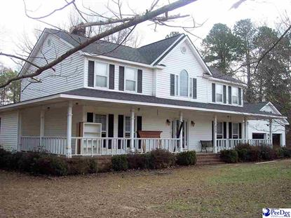 252 Riverwood Drive Dillon, SC MLS# 20190002