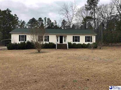 523 Desert Way Hartsville, SC MLS# 20190163
