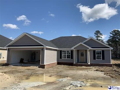 3148 Haven Straits Road Florence, SC MLS# 20201119