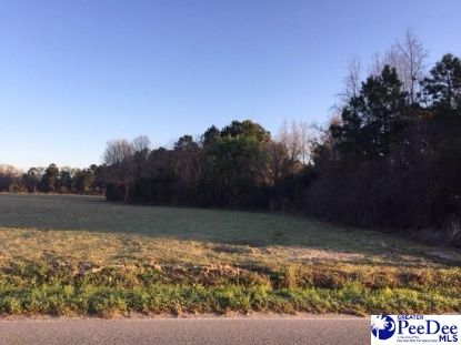 4600 Lot 3 Meadors Rd Florence, SC MLS# 20202636