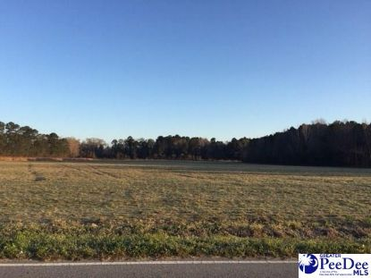 4600 Lot 2 Meadors Rd Florence, SC MLS# 20202637