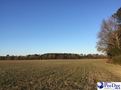 4600 lot 9 Meadors Rd Florence, SC MLS# 20202638