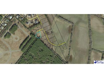 654 Jewell Court_LOT 10 Florence, SC MLS# 20202710