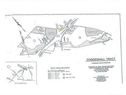 Tract 3 TV & Campground Roads Florence, SC MLS# 117659
