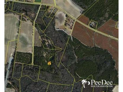 TBD Swift Creek Road Hartsville, SC MLS# 123921