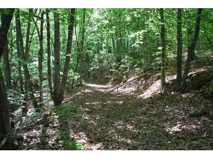 0 Woodall Mountain Road Pickens, SC MLS# 20176264