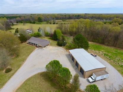 2000 CR 133  Town Creek, AL MLS# 425924