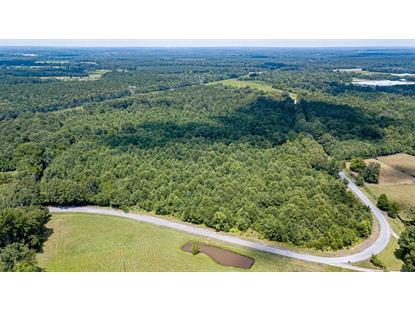 4535 CR 23  Mount Hope, AL MLS# 427221