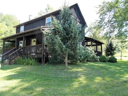 10608 WALLIS RUN ROAD, Trout Run, PA