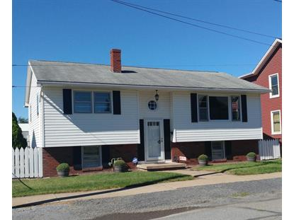 517 DEPOT STREET Williamsport, PA MLS# WB-78824