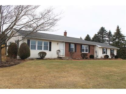 62 CARONE DRIVE, Cogan Station, PA