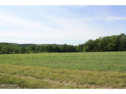 LOT 1-4 THORNBOTTOM ROAD, Middlebury Center, PA