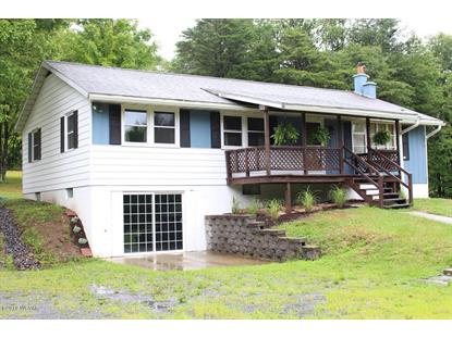 133 LEONARDS LANE, Trout Run, PA