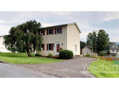 10 E SOUTHVIEW AVENUE Williamsport, PA MLS# WB-84876