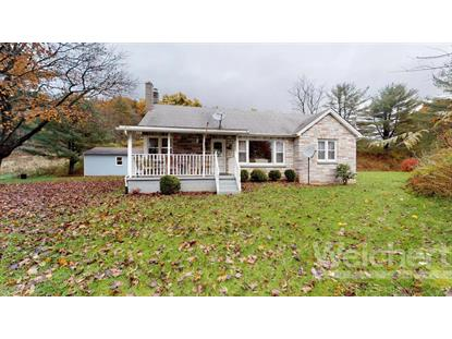 3091 PLEASANT VALLEY ROAD, Cogan Station, PA