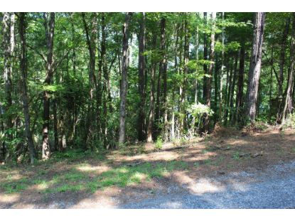 0 Quail Hollow Way Dadeville, AL MLS# 476738