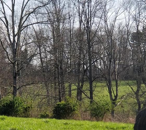 3785 E Highway 552, Lily, KY 40740