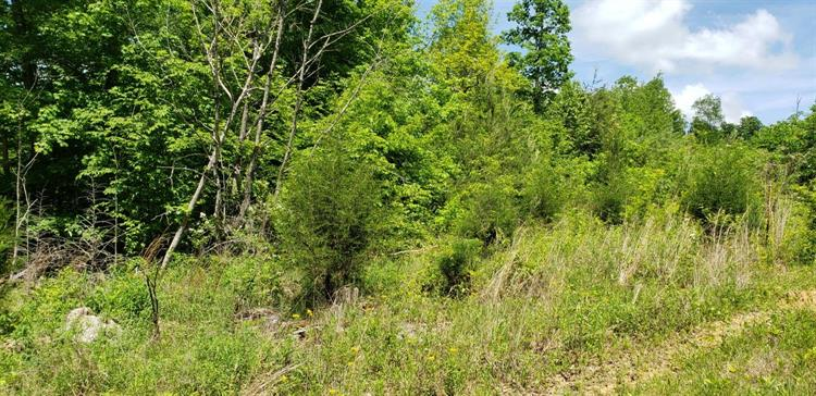 24 Big Rock Run, Somerset, KY 42501 - Image 1
