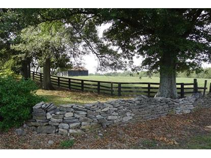 7333 Tates Creek Road Lexington, KY MLS# 1707788
