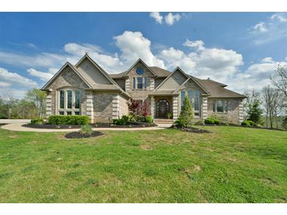 6496 Spears Point Lane Lexington, KY MLS# 1809458