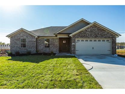 316 Southern Aster Trail, Richmond, KY