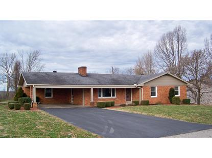 233 Blueberry Lane Mt Sterling, KY MLS# 1900434