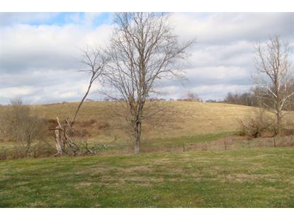 9999 Van Thompson Road Mt Sterling, KY MLS# 1900534