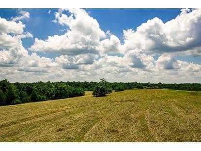 1105 Fox Creek-Goshen Road Lawrenceburg, KY MLS# 1915681