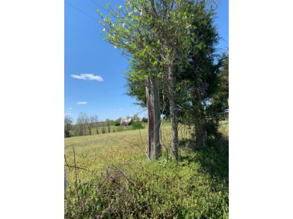 4225 Hickory Nut Road Nancy, KY MLS# 20018888
