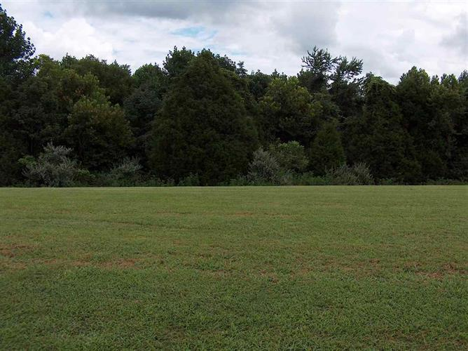 Lot 2 Phoenix Drive, Fountain Run, KY 42133